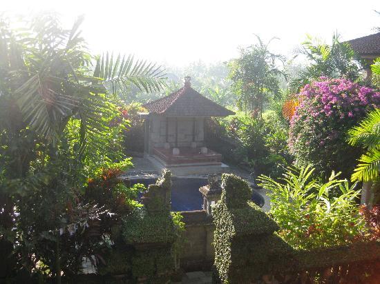 Garden View Cottage: vu de la salle du petit déjeuner