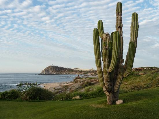 Sheraton Grand Los Cabos Hacienda del Mar: View from champsionship golf course