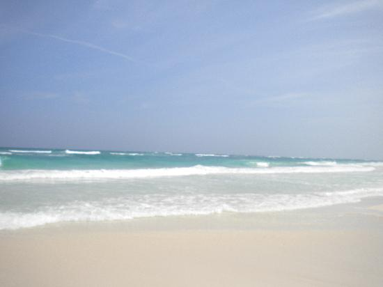 Coco Tulum: view of amazing beach out front!