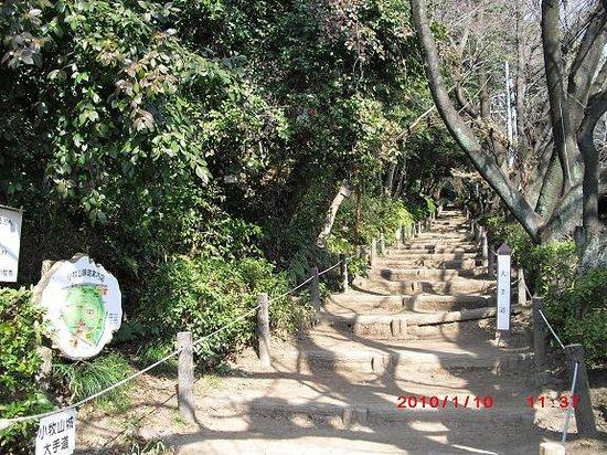 Komaki, Japan: よく整備された登山道