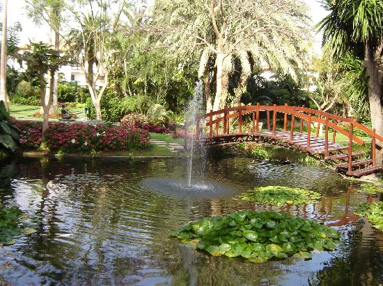 jardines del hotel picture of hotel botanico the