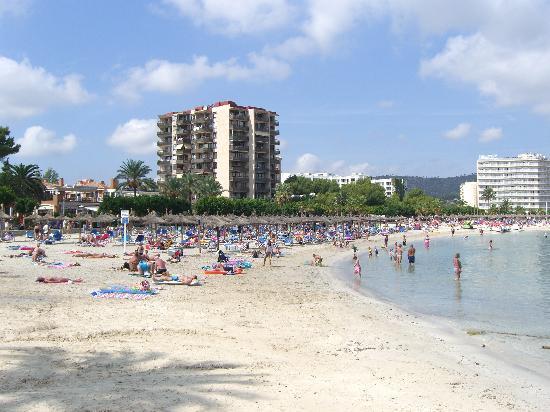Zafiro Palmanova: beach