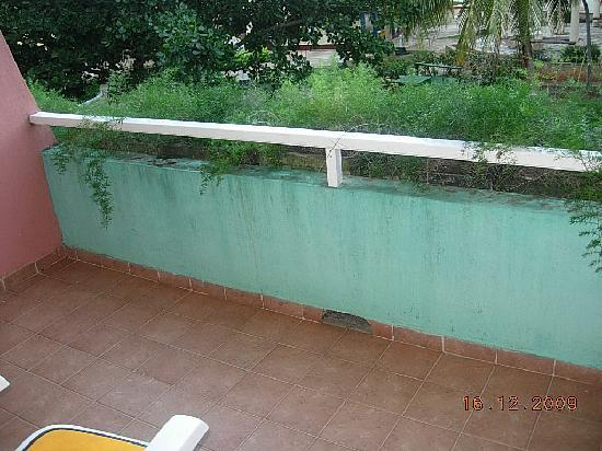 Brisas del Caribe Hotel: mold on our deck