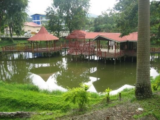 Kapit, Malasia: 乌龟湖一隅