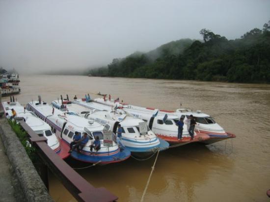 Kapit, Malasia: 清晨中的拉让江河畔