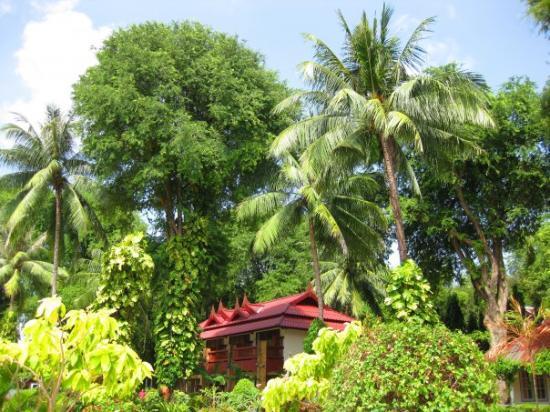 Chaweng Villa Beach Resort : Chaweng Villa
