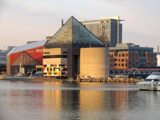 National Aquarium Baltimore Md Picture Of Baltimore