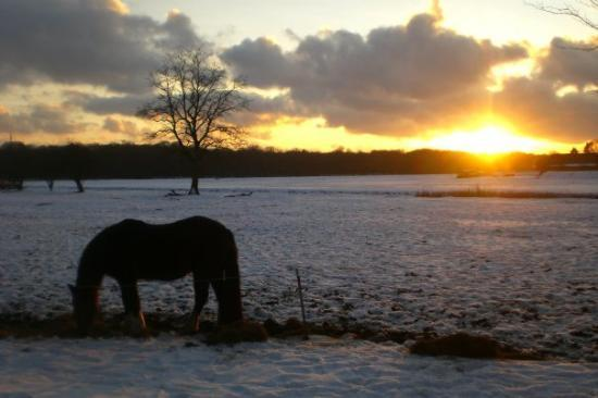 Hilversum Photo