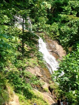 Amicalola Falls State Park: Amicola Falls.