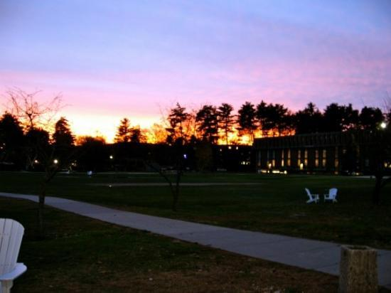 November 15, 2009. Westfield State College. The green. I couldn't resist taking pictures of t