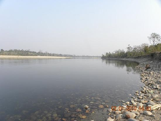 Nameri National Park, India: Nameri River