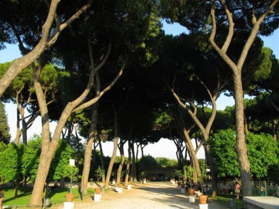 Il giardino degli aranci aventino foto di colle aventino roma tripadvisor - Giardino degli aranci frattamaggiore ...