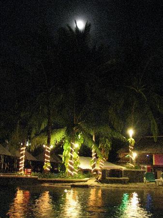 Hard Rock Hotel Bali: プールは夜でも泳ぐ人がいた