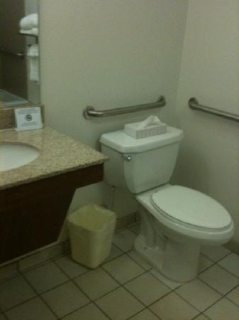 Comfort Suites Arena: Bathroom, but doesn't really show the small vanity