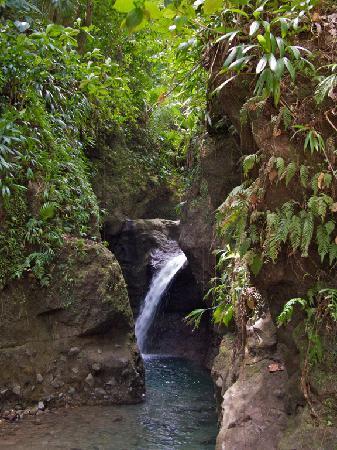 Beau Rive: Denier waterfall, near Rosalie