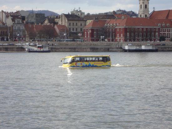 Budapest, Hungary: pulman-barca