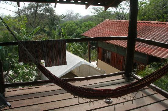 Funky Monkey Lodge: oceanview??hostel-appartment with view inside the other cabins