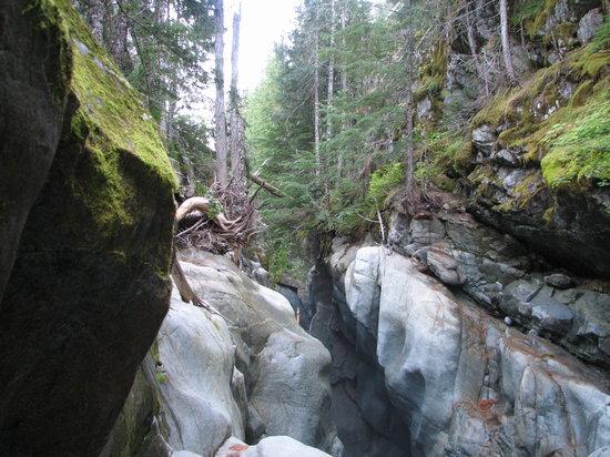 Box Canyon Loop