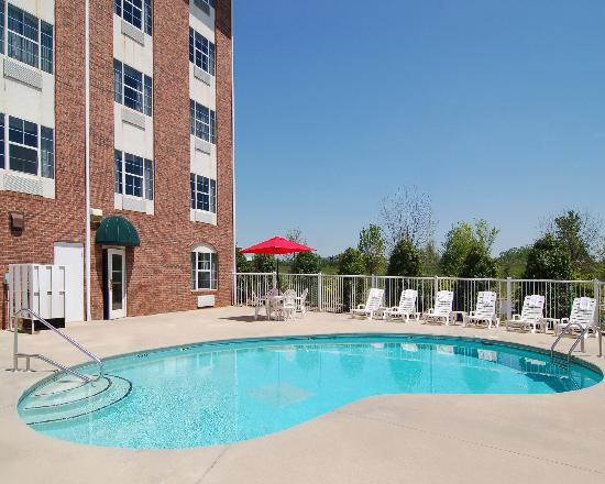 Comfort Suites: Swimming Pool
