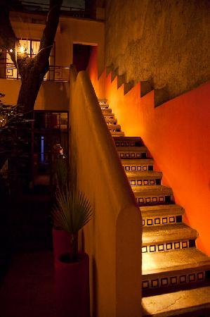 The Red Tree House: Stairs