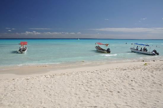 International House Riviera Maya : This is Playa del Carmen!