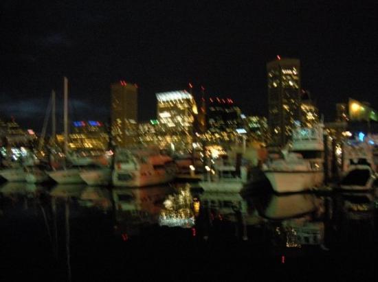 Maryland صورة فوتوغرافية