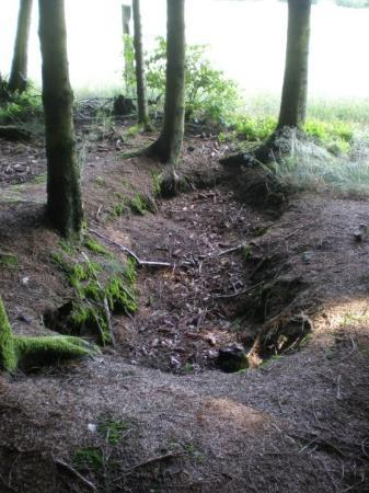 Bastogne, Belgium: Easy Company  506th PIR 101st ABN Foxhole