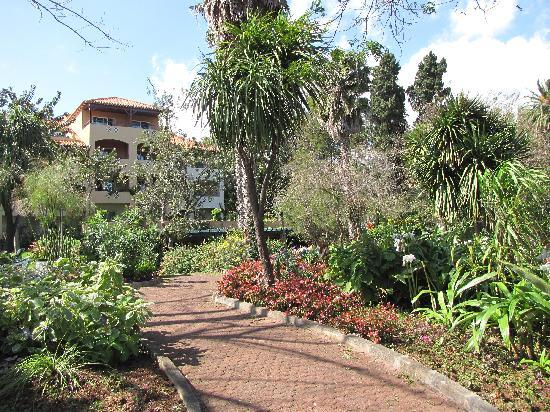 pool picture of pestana village garden resort aparthotel