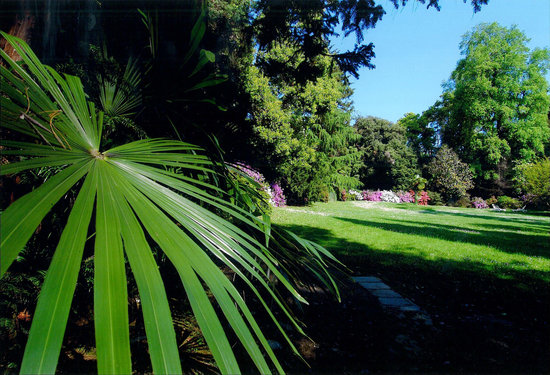 Belgirate, Italy: Il parco botanico di 20.000 mq dell'hotel
