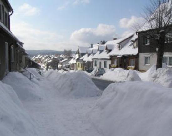 Winter in Benneckenstein / Harz - 1