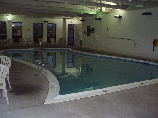 Quality Inn: Pool