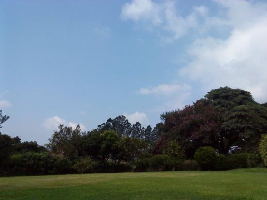 لا كاتلانيا هوتل آند سويتس: A nice view