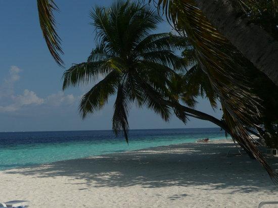 Остров Тхудуфуши: colori indimenticabili
