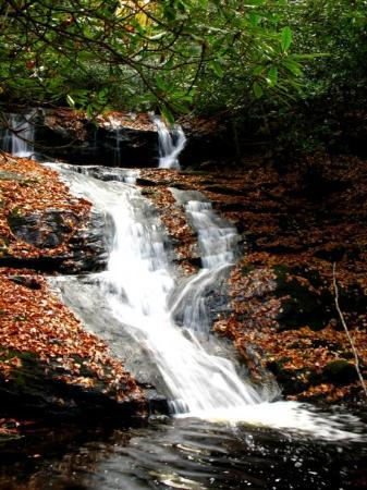 Franklin, Kuzey Carolina: Laurel Falls