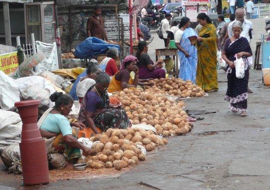 Τιρουβανανταπουράμ, Ινδία: vendita noci di cocco