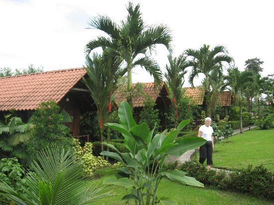 Arenal Green Hotel: Charming cabins