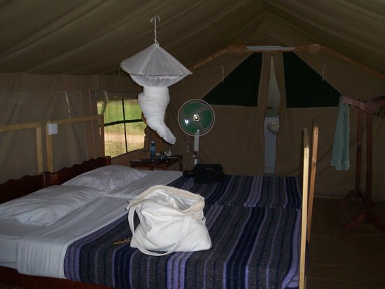 Angel's Bay Resort: Tenda in Safari (interni)
