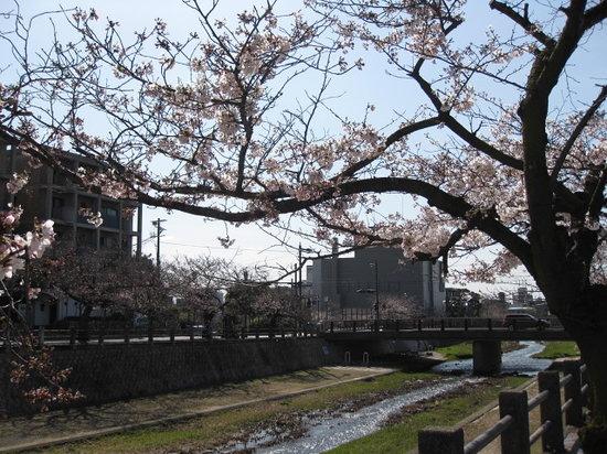 Ashiyagawa Kahan