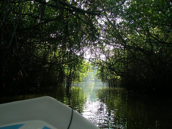 Shangri-Lanka Villa: River Trip