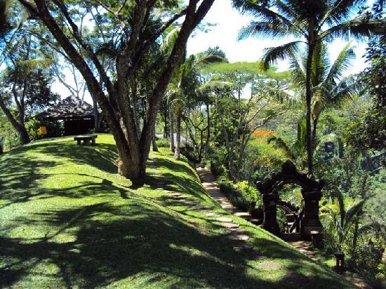 COMO Shambhala Estate : Garden and Yoga Pavillon