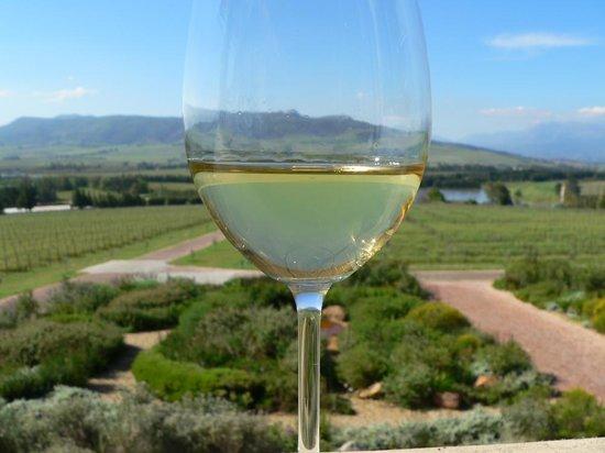 Tsiba Tsiba Wine Tours: Wines & views in the Cape Winelands