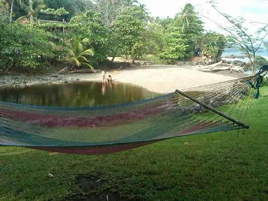 Hotel Amor de Mar: Hammock and freshwater swimming hole
