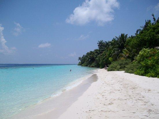 Vilamendhoo: la spiaggia di fronte alla stanza 101