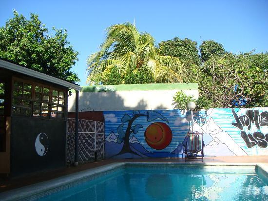 Managua Backpackers Inn: Hostel pool