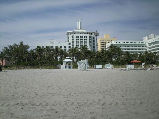 The Palms Hotel & Spa: vista dalla spiaggia