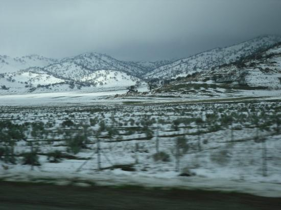 Tehachapi Photo