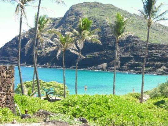 Waimanalo, Hawaï: beautyful Makapu´u beach, looks awesome, you agree????