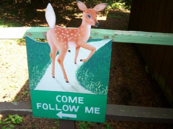 Deer Ranch Photo