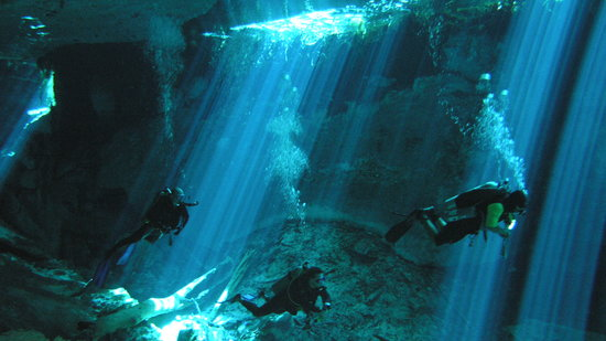 Geofish Dive