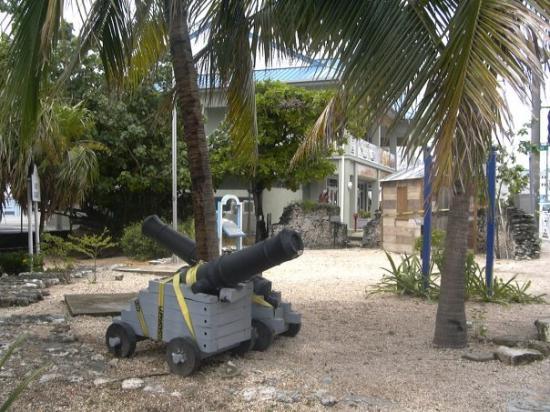 Bilde fra Spot Bay